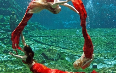 HotSpot Pictures | Real life mermaids